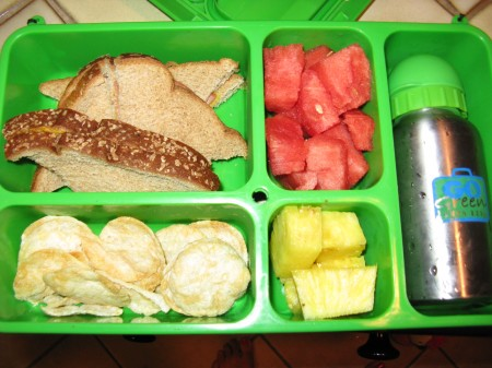 Organic Pop Chips, pineapples, watermelon, soy turkey on wheat