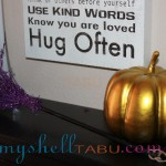 The most important 3 family rules in our house. Also, Mooch wanted you to see the Halloween directions